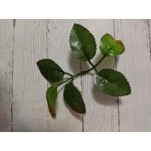 Листья розы  3х5см ткань зелёные, цена за 1 шт